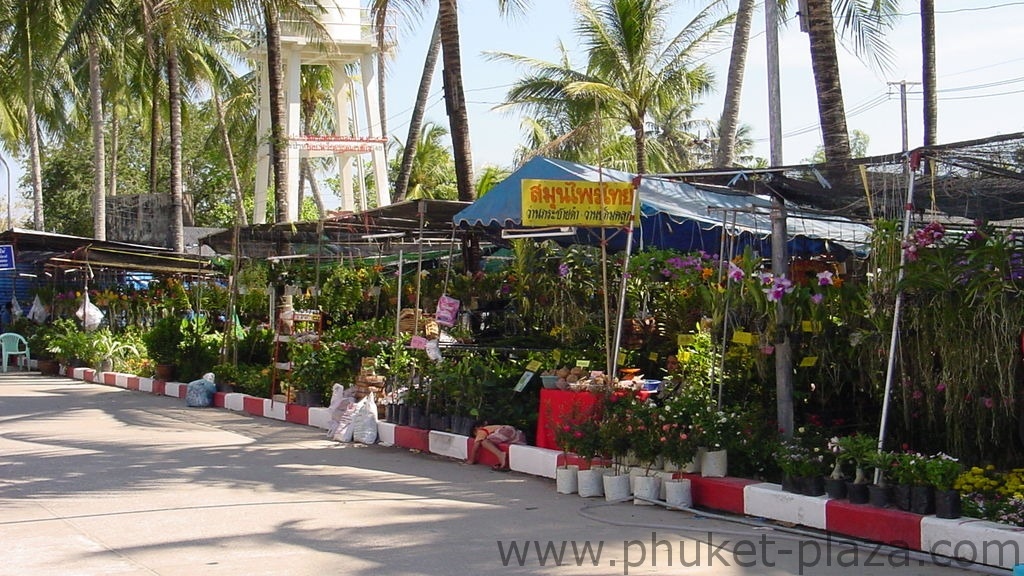 phuket photos daylife chalong wat chalong